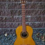 Great Starter Guitar